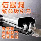 捕鼠器 塑料 捕鼠籠 驅鼠器 (透明款)
