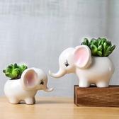 多肉花盆可愛動物陶瓷花盆簡約個性肉肉盆【英賽德3C數碼館】