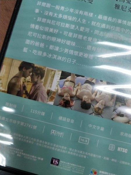 挖寶二手片-0B01-625-正版DVD-電影【我的觸男日記】-路易霍夫曼 尼克許曼(直購價)