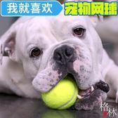 狗狗玩具球金毛泰迪彈力球耐咬磨牙網球寵物玩具【格林世家】