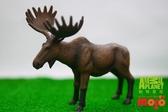 【Mojo Fun 動物星球頻道 獨家授權】 美洲麋鹿 387023