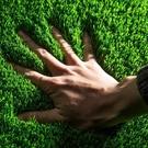 加密人工草坪塑料草坪陽台假草皮幼兒園人造草坪仿真草坪地毯戶外 母親節禮物