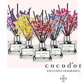韓國 cocod or 滿天星花束室內擴香瓶 200ml 擴香 香氛 香味 芳香劑 室內擴香