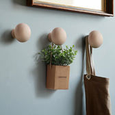 壁掛飾 小洋菇造型壁掛 (DC2) / H&D東稻家居