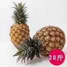 ●果肉顏色為淡黃色 ●纖維少、果肉細緻、甜度高 ●有天然鳳梨香氣