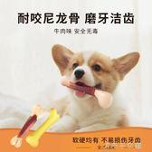 狗狗玩具泰迪幼犬耐咬磨牙棒小狗咬膠骨頭大型犬寵物玩具 千千女鞋