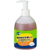 南僑水晶葡萄柚籽抗菌洗手液320g【愛買】