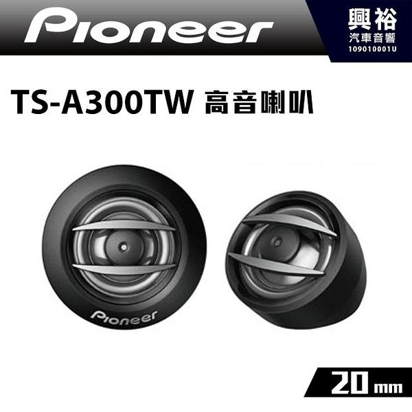 【Pioneer】20mm高音喇叭TS-A300TW *RMS 100W先鋒公司貨
