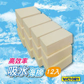 【VICTORY】高效率吸水海綿-小(12入) #1030012