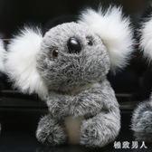 毛絨玩具 考拉公仔玩具小號樹袋熊玩偶抓機娃娃活動禮品 df2351【極致男人】