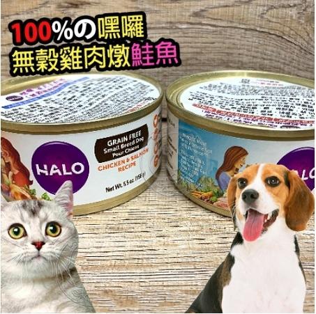 【🐱🐶培菓寵物48H出貨🐰🐹】HALO嘿囉 成貓 無穀貓主食罐 156g*1罐