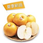 蓋美豐水梨6入禮盒(約2.4kg/盒)