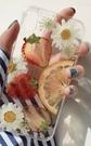 天然水果壓花片,五片裝