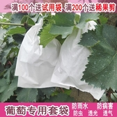 葡萄袋子防蟲袋露天葡萄套袋果袋專用套袋防水套葡萄用紙袋育果袋YTL