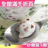 日本 砂糖貓 6顆 貓咪造型砂糖 優雅可愛喝茶 下午茶 調味料 糖塊 團購上班族貴婦【小福部屋】