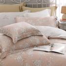 鴻宇 雙人特大床包薄被套組 天絲300織 蜜爾娜 台灣製 T20110