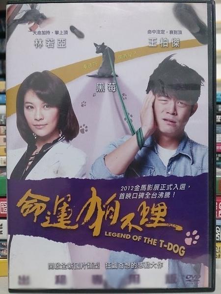 挖寶二手片-Y93-041-正版DVD-華語【命運狗不理】-王柏傑 林若亞