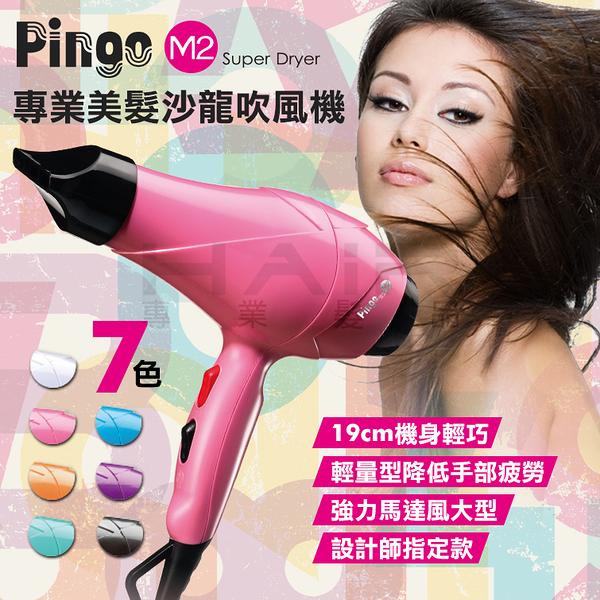 Pingo台灣品工專業美髮沙龍吹風機M2 輕巧 馬力強 沙龍用【HAiR美髮網】