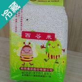 【豆豆家族】西谷米600G/包【愛買冷藏】