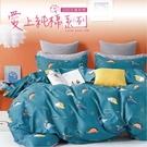 Artis台灣製-精梳純棉 單人床包 -七彩恐龍二件組
