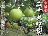 【果之蔬-全省免運】日本室外鳥取二十世紀梨 ( 5KG±10%含箱重/每箱約10-12顆)