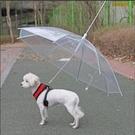 快速出貨寵物用品雨具狗狗雨傘創意牽引繩小狗雨衣帶鏈泰迪比熊小型犬YJT