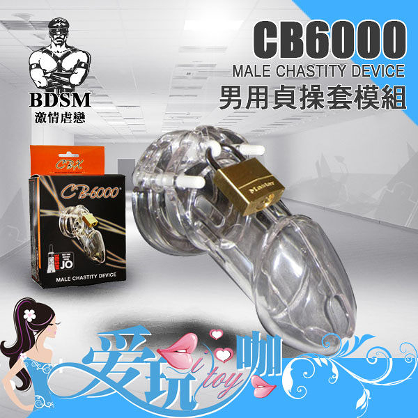 美國 A.L. Enterprises 男用貞操套模組 CB6000 Male Chastity Device 貞操帶 BDSM 主奴調教 必備精品