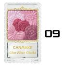CANMAKE 花漾戀愛修容組 #09 969-09 另售 Cezanne EXCEL PD DHC