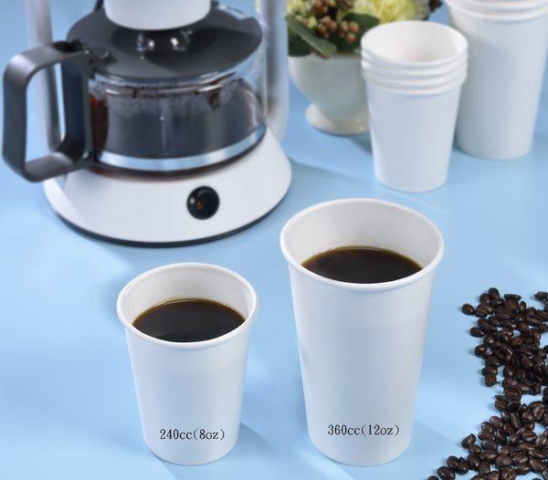 240cc( 8 oz )咖啡杯 X 300個 【蕎商 生活智庫】