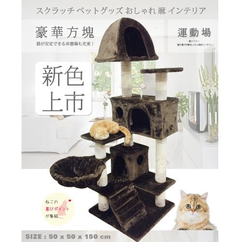 *KING*含運-日本寵喵樂《豪華方塊 貓跳台/貓爬窩/貓抓》 TW003