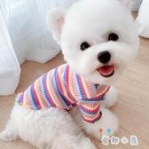 彩虹衣秋冬狗狗貓咪打底小型犬寵物衣服【奇趣小屋】