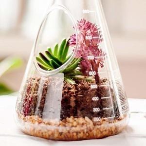 SUCK UK 玻璃三角燒杯植物盆