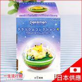 〖LifeTime〗﹝寶可夢生態球盒玩﹞日貨 寶可夢 盒玩 兒童 玩具 水晶球 生態球 D62118
