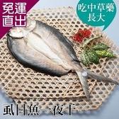 台江漁人港 虱目魚一夜干(全魚去刺)(450g/包,共二包) EE0280029【免運直出】