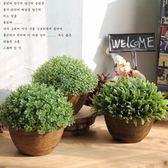 仿真綠植物盆栽