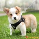 背心式狗狗牽引繩反光條胸背帶狗鏈子繩遛狗繩【小獅子】