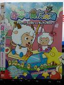 影音專賣店-X19-070-正版DVD*動畫【羊羊與灰太狼(15)】-國語發音