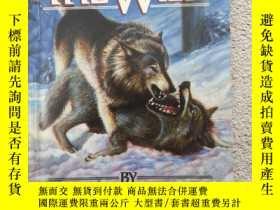 二手書博民逛書店The罕見Call of the Wild 野性的呼喚Y1913