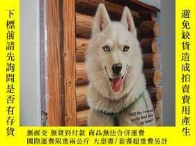二手書博民逛書店Husky罕見in A Hut (Animal Ark) 英文原