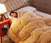 羊羔絨冬季棉被 加厚保暖宿舍單人棉質雙人 BQ1054『夢幻家居』