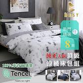 【BEST寢飾】天絲床包涼被三件組 加大6x6.2尺 100%頂級天絲 萊賽爾 附天絲吊牌 D1