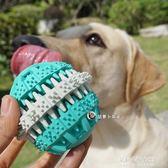寵物橡膠潔齒玩具 小中大型犬磨牙益智耐咬球泰迪拉布拉多狗玩具  朵拉朵衣櫥