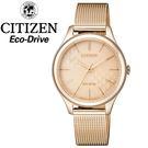 【萬年鐘錶】星辰 CITIZEN Eco Drive光動能  情人金色腕錶  太陽能動力  復古米蘭帶設計  EM0503-83X