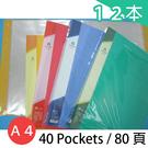 雙德 A4資料簿 PP資料本 SD-40 主色板(40入) 80頁/一箱12本入(定120) SUANDER 無內紙 MIT製