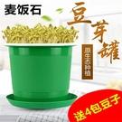 豆芽機家用豆芽罐豆芽種植桶發豆芽麥飯石黃豆綠豆黑豆種植盆快速出貨