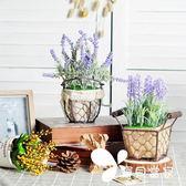 仿真植物盆栽 室內窗臺書桌電視柜裝飾物