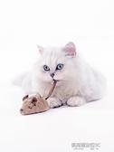 貓玩具電動假老鼠逗貓棒仿真小老鼠自動逗貓幼貓用品小貓咪的玩具 凱斯盾