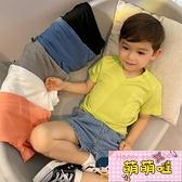 男童T恤兒童短袖夏季彈力V領打底衫百搭寶寶純色體恤【萌萌噠】