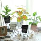 北歐風創意鐵藝幾何花盆客廳陽臺花瓶擺件現代簡約落地花架花器 夢幻衣都