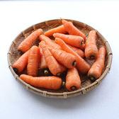 (✿◠‿◠)促銷品~任選六樣$399免運活動區專用★【日燦】有機紅蘿蔔